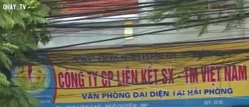 Liệu công ty Liên Kết Việt có phải là công ty bán hàng đa cấp lừa đảo phần II (17/08/2015)