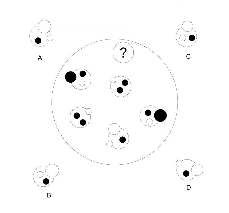 ảnh câu hỏi suy luận,nâng cao logic,khả năng suy luận,trò chơi trí não,luyện tập trí não,nâng cao iq