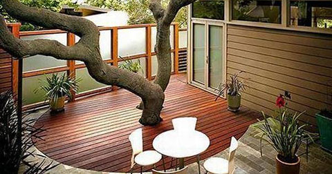 Thay vì chặt cây làm nhà, hãy xây nhà theo cây!!!
