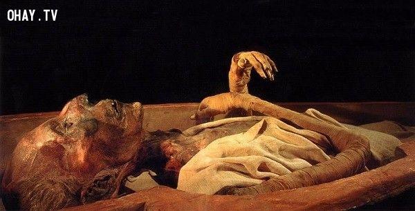 Rợn tóc gáy về tục ướp xác người chết ở Ai Cập cổ đại