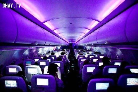 ảnh hàng không,có thể bạn chưa biết,ngành hàng không,phi công,máy bay,đi máy bay