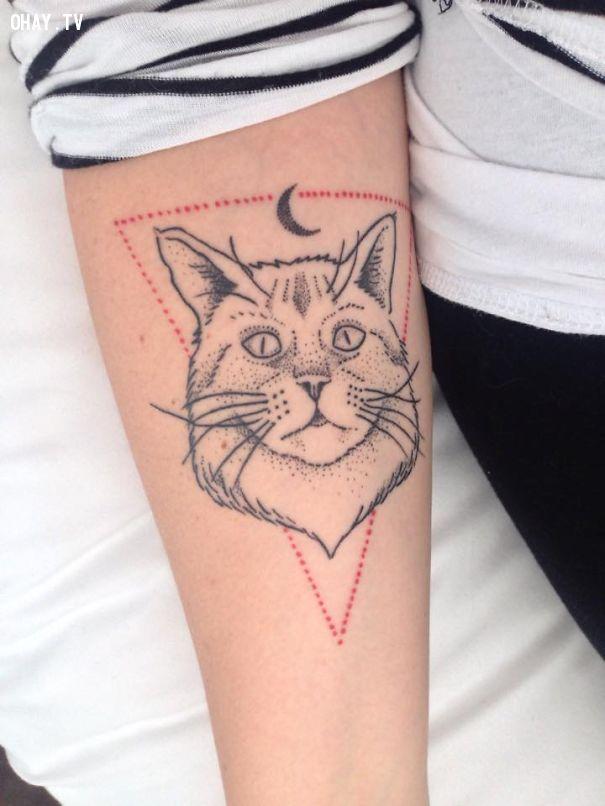 ảnh hình xăm mèo,hình xăm cho nữ,hình xăm đẹp,hình xăm mới,hình xăm đáng yêu,hình xăm