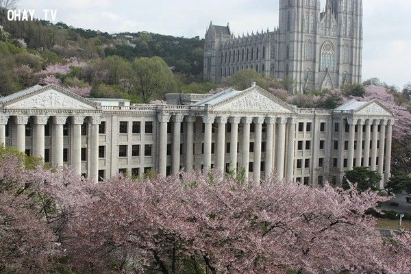 ảnh Lee min ho,Sao Hàn,super Junior,SNSD,kpop,trường đại học,hàn quốc,trường đại học hàn quốc
