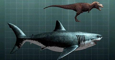 10 sinh vật khổng lồ thời tiền sử
