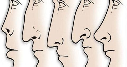 Hình dáng mũi nói gì về tính cách một người ?