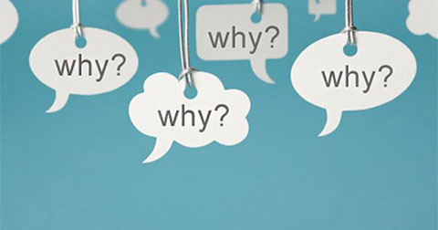 4 câu hỏi quan trọng nhất trong cuộc đời bạn