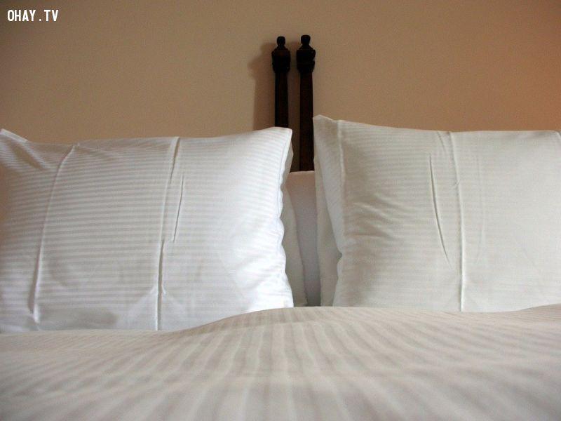 ảnh khách sạn,internet,máy điều hòa,vòi hoa sen,du lịch,smartphone,giấc ngủ,phiền toái