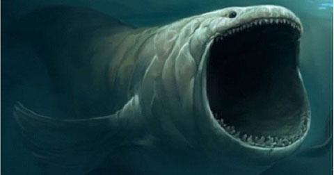 Đi tìm những bí ẩn còn bỏ ngỏ trong lòng đại dương