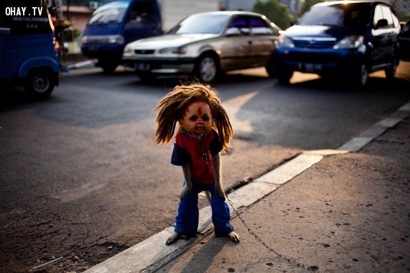 ảnh đáng sợ,kinh dị,Kampung Monyet,Bảo tàng Vrolik,Guatemala,Waverly Hills,Hồ Natron,Tophet,hiến tế trẻ em