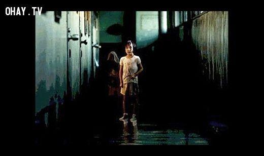 Sự trùng hợp đến kỳ lạ giữa cái chết bí ẩn của Elisa và bộ phim kinh dị Dark Water