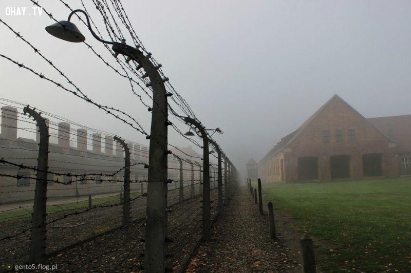 Ôsơvenxim(Auschwitz) – Lò giết người dã man, tàn bạo, kinh khủng của phát xít Đức.