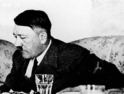 ảnh Hitler,Osama Bin Laden,giải Nobel