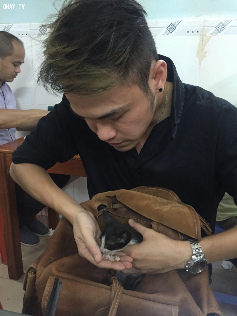Chàng trai nhai cơm và cho chú mèo nhỏ ăn