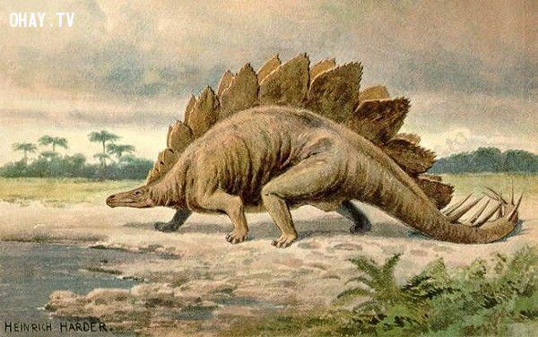 Khủng long Stegosaurus