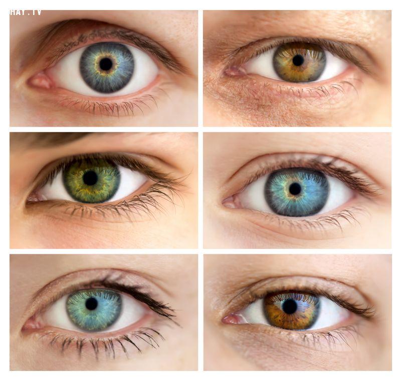 ảnh màu mắt,thay đổi màu mắt
