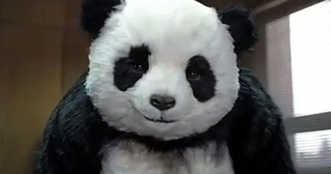 Top những quảng cáo pho mát Panda hài hước nhất