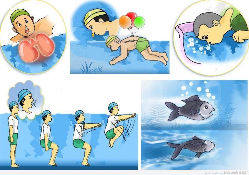 ảnh không biết bơi,kỹ năng sinh tồn,chết đuối,đuối nước