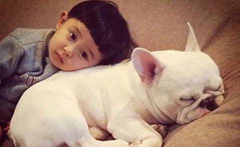 Tại sao chỉ có con người nuôi thú cưng?
