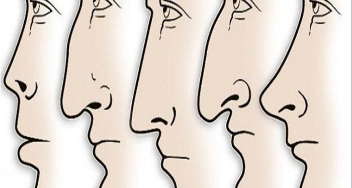 ảnh nhìn mũi đoán tính cách,dáng mũi,ngôn ngữ hình thể,trắc nghiệm tính cách,trắc nghiệm vui
