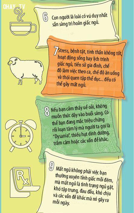 sự thật về giấc ngủ