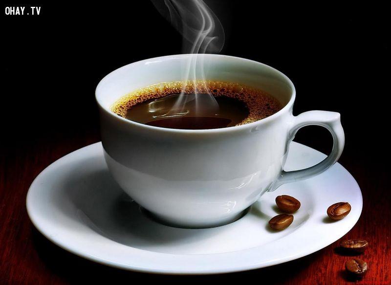 chân lý cuộc sống về tách cà phê
