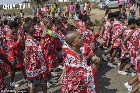 65 thiếu nữ trinh tiết bị chết thảm trong khi đến thi làm vợ vua