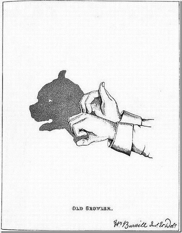 ảnh tạo hình con vật bằng tay,tạo hình,đôi tay