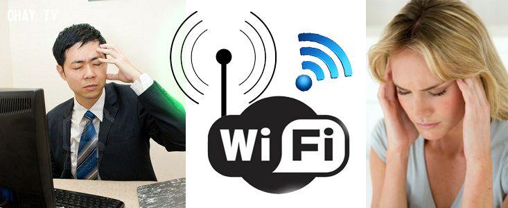 ảnh sóng wifi,ảnh hưởng của wifi,mặt trái của công nghệ