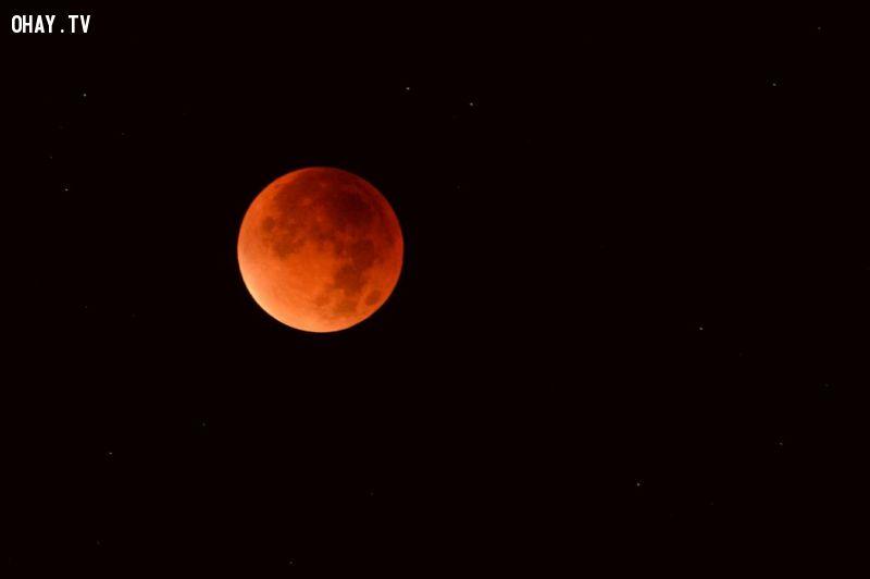 trăng máu ở Áo