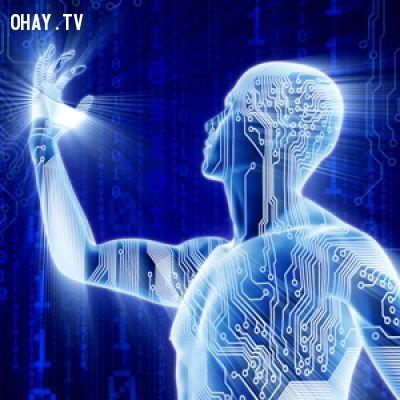 ảnh hình dáng con người 1000 năm sau,tiến hóa,loài người,con người,sự tiến hóa