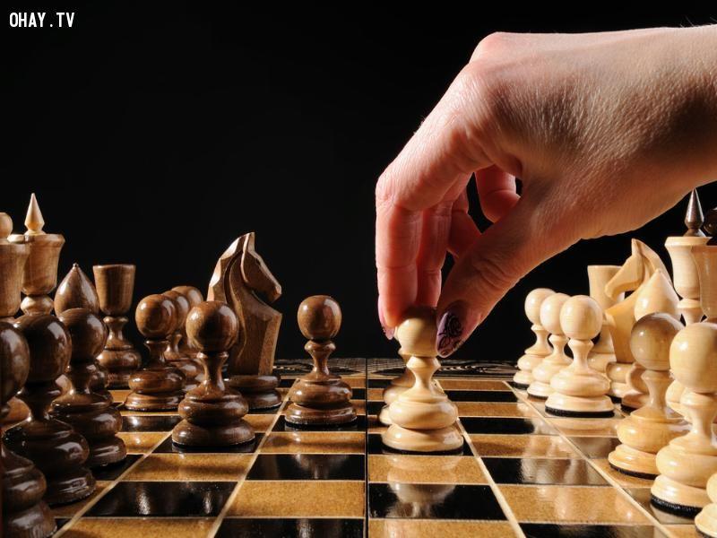 Chơi cờ giỏi thì hiển nhiên là thông minh rồi