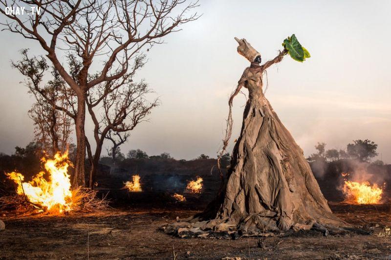 ảnh biến đổi khí hậu,khủng hoảng môi trường,ô nhiễm,môi trường,sinh thái,nghệ thuật siêu thực,hạn hán,phá hủy môi trường,ảnh siêu thực,Monteiro
