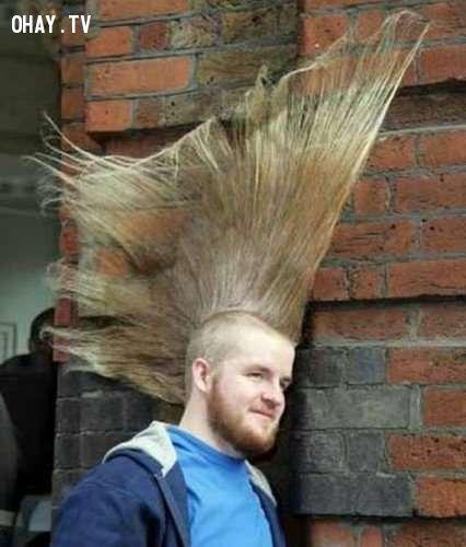ảnh kiểu tóc,kiểu tóc kỳ lạ,kiểu tóc độc