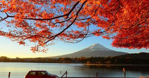 Tất tần tật các bí quyết bỏ túi cho một chuyến du lịch bụi Nhật Bản