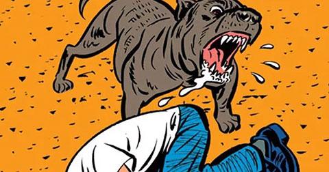Cách tự vệ khi bị chó dữ tấn công