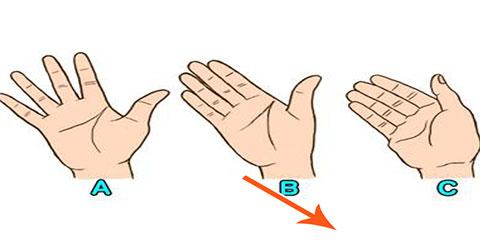 Khoảng cách giữa những ngón tay nói gì về bạn