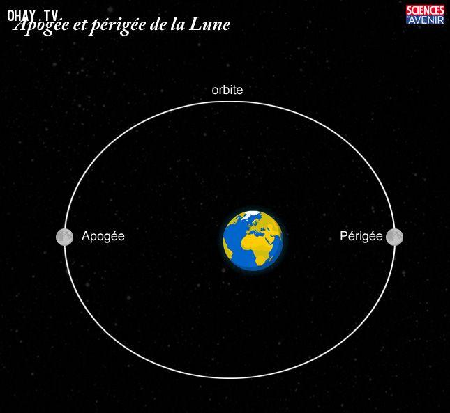 Đỉnh cao và cận điểm của Mặt Trăng
