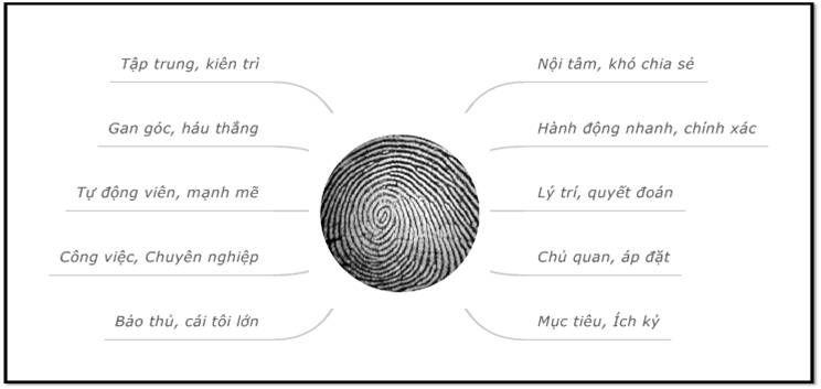 Chủng vân tay, vân tay, dấu vân tay
