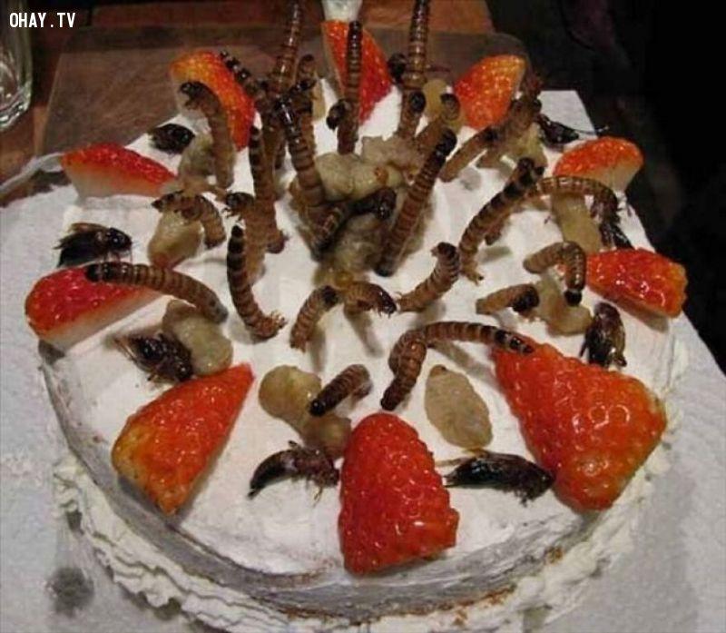 ảnh bánh kem,bánh sinh nhật,bánh kem độc đáo,bánh kem bựa