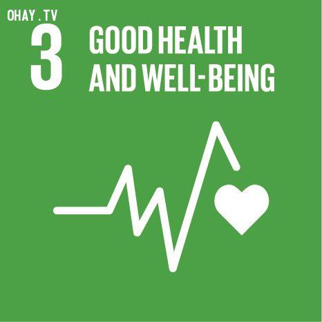 17 mục tiêu phát triển bền vững của Liên Hiệp Quốc mọi người cần biết