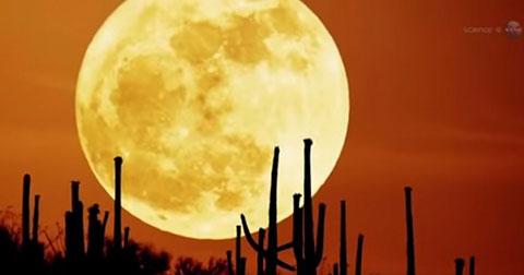 Siêu Mặt Trăng: Tại sao hành tinh này lại xuất hiện gần chúng ta như thế?