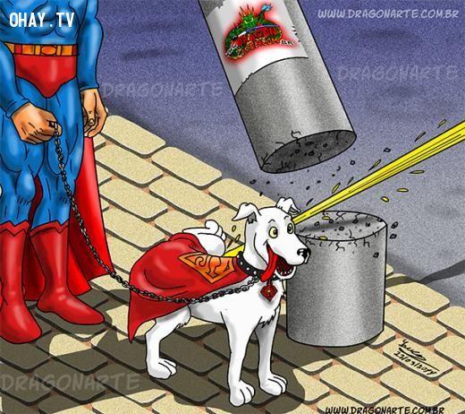 Khi chó của superman đi tè