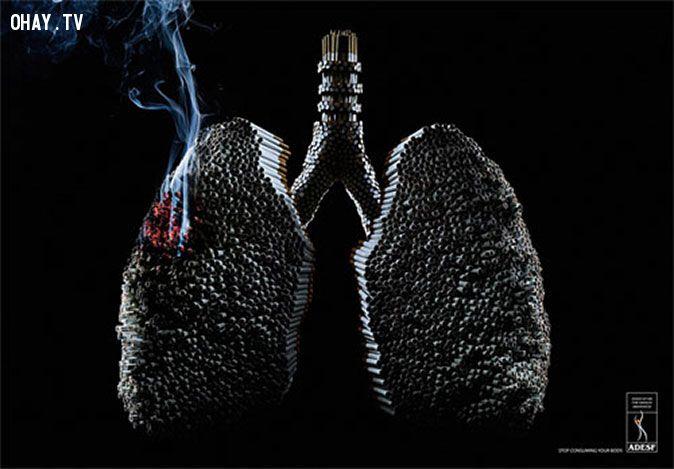 ảnh bí quyết lọc sạch phổi,lọc sạch phổi,hút thuốc,mẹo sức khỏe