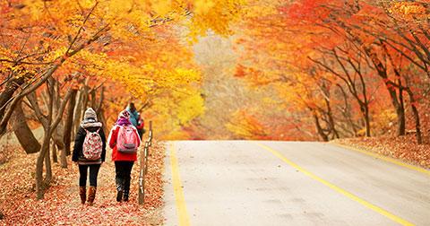 Những ngọn núi tuyệt đẹp vào mùa thu ở Hàn Quốc