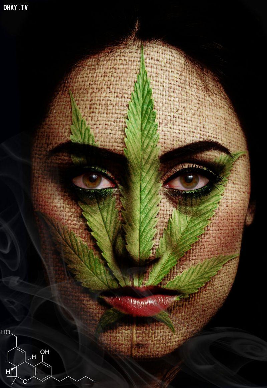 ảnh ma túy,sự tác động của ma túy,tác hại của ma túy,chất gây nghiện