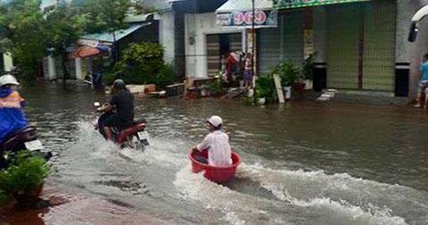 Những hình ảnh hài hước chỉ có trong mùa mưa bão