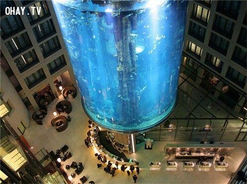 Thang máy hình trụ AquaDom tại Đức làm bằng kính trong suốt