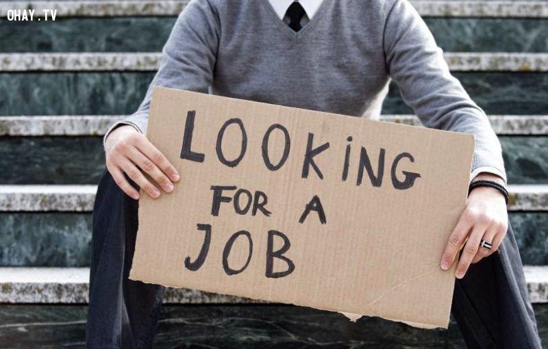ảnh cử nhân,thất nghiệp,định hướng,nghề nghiệp,thị trường lao động