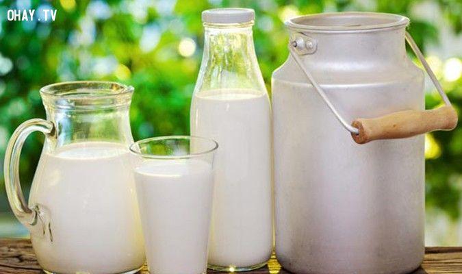 ảnh uống sữa,uống sữa nhiều không tốt,uống 3 ly sữa