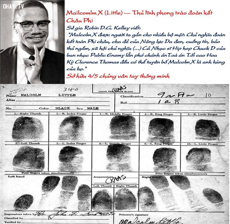 ảnh chủng vân tay,dấu vân tay của nhân tài,dấu vân tay,vân tay,vân tay và não bộ